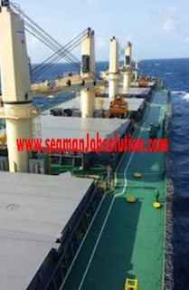 Need Third Officer For Cargo Reefer