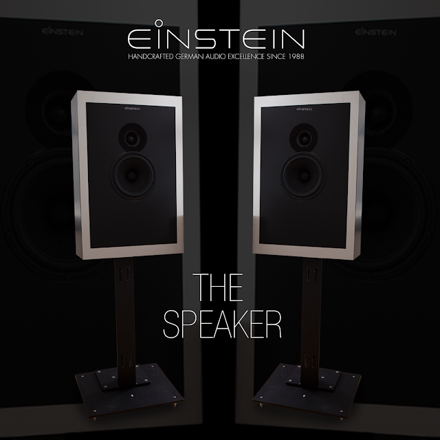 Einstein The Speaker