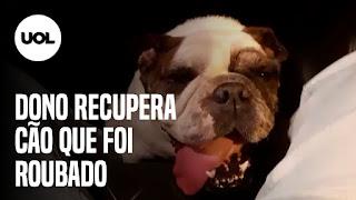 Dono recupera Cão após assalto – Vereadora Bella Gonçalves é presa em manifestação – ArtRio marca volta de evento