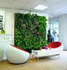 cara membuat taman vertikal di rumah, cara membuat dinding tanaman hidup di dalam rumah