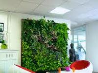 Ide Kreatif Membuat Dinding Tanaman Hidup Di Dalam Rumah