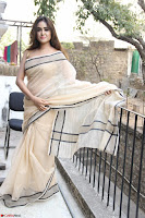 Sony Charishta in Brown saree Cute Beauty   IMG 3595 1600x1067.JPG