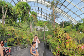 Cloud Forest o Bosque Nuboso. Gardens by the Bay o Jardines de la Bahía, Singapur o Singapore.