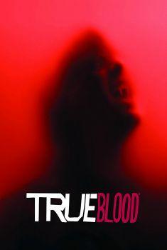 True Blood 6ª Temporada Torrent - BluRay 720p Dual Áudio