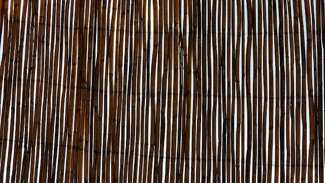 tetto di canne di bamboo