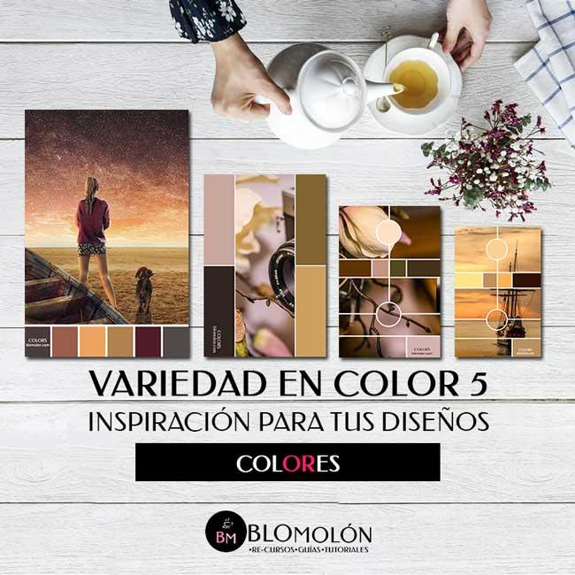 variedad_en_color_5_inspiracion