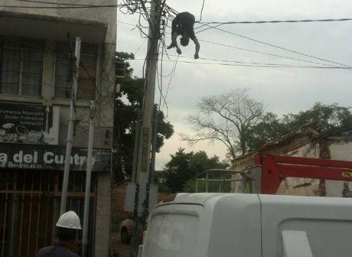 Se quería robar unos cables y murió electrocutado