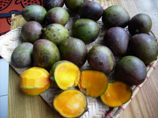 The Amazing Benefits And Efficacy Of Kasturi Fruit For Health - Healthy T1ps