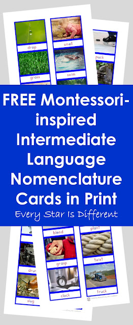 FREE Montessori-inspired Intermediate Language Nomenclature Cards in Print