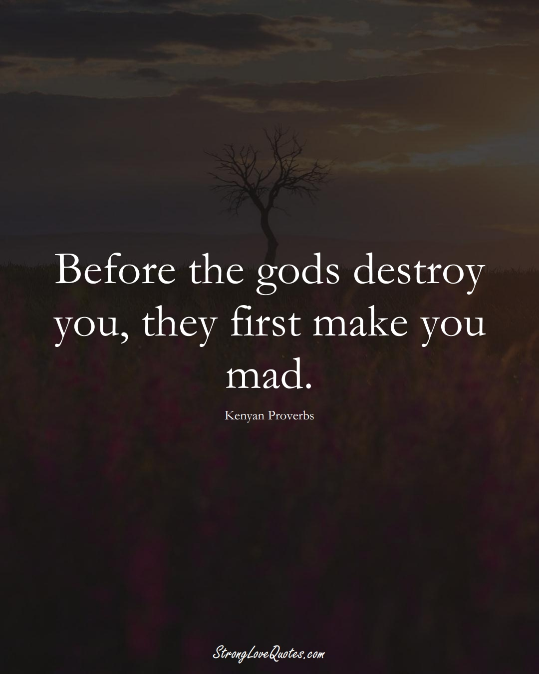 Before the gods destroy you, they first make you mad. (Kenyan Sayings);  #AfricanSayings