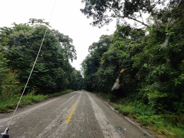 must visit attractions in Chiapas Palenque