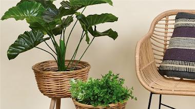 Maceteros de mimbre y ratán con soporte para plantas de interior