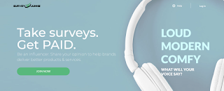 Make money online survey junkie