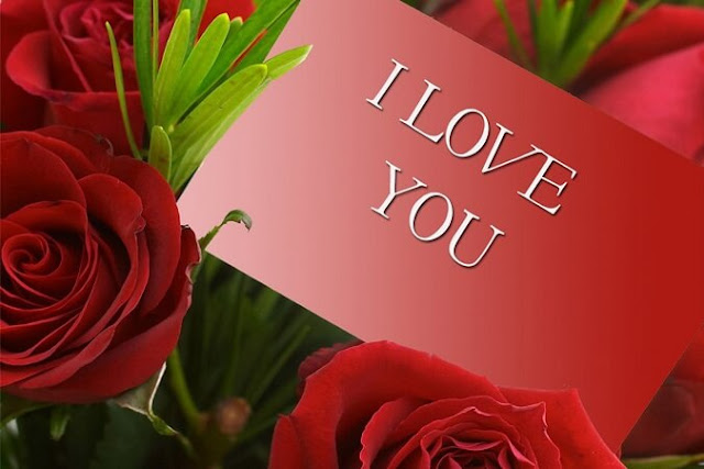 Valentine Day Message Wishes Quotes SMS