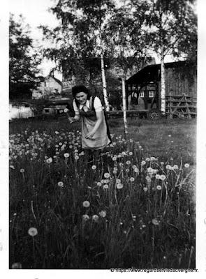 Photo de famille, noir et blanc, portraits de femmes,