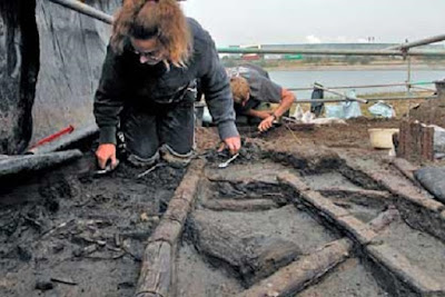Bronze Age settlement was abandoned after fire
