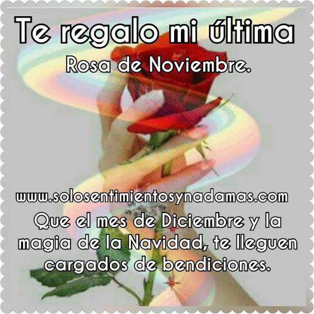 última rosa de Noviembre.