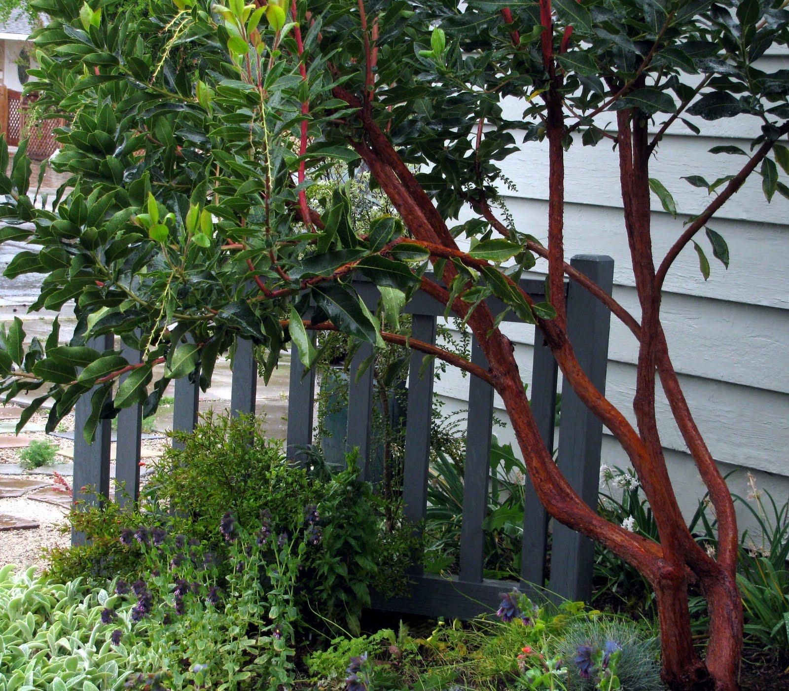 Interleafings Garden Designers Roundtable Expanding: InterLeafings: Garden Designers Roundtable: Top Landscape