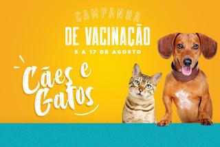 Campanha de Vacinação para Cães e Gatos inicia na próxima segunda-feira