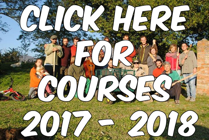 Courses 2017 - 2018