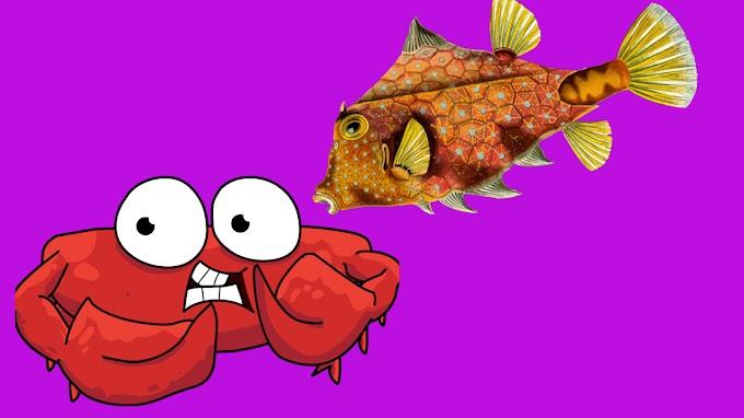 दो मित्र केकड़ा अर मछली  -TWO FRIEND CRABS AND FISH Hindi Story