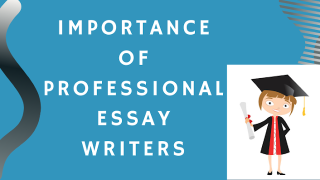 Importance Of Professional Essay Writers