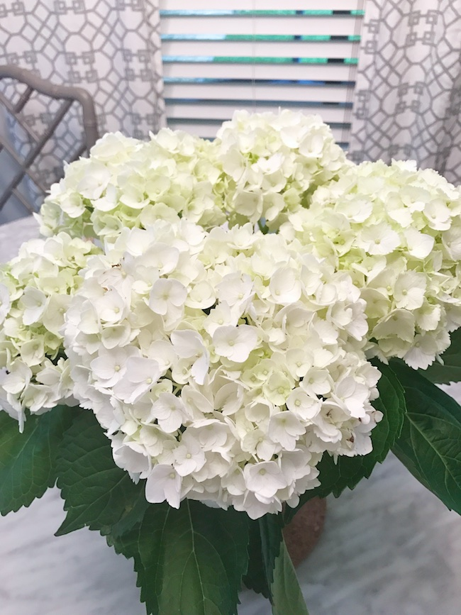 I First Read My Friend Bree S Post About How She Keeps Her Hydrangeas Alive And You Can Sometimes Get Them To Rehydrate By Soaking The Blooms In Water
