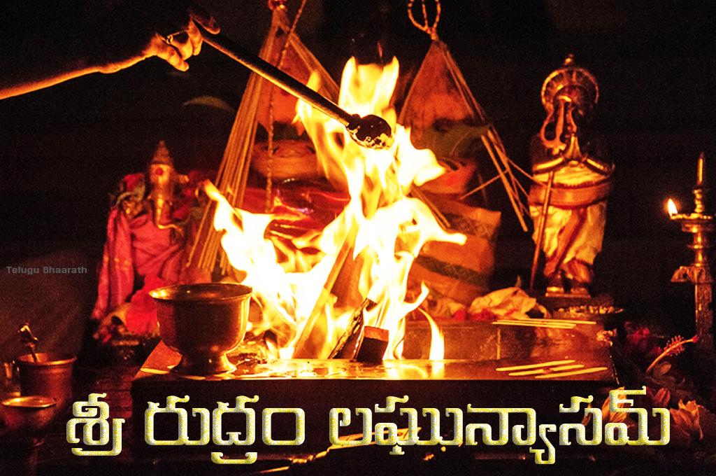 శ్రీ రుద్రం లఘున్యాసమ్ - Sri Rudram Laghunyasam