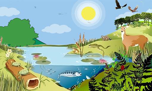 Ekosistem adalah, Pengertian Ekosistem, Contoh Ekosistem