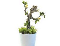 Plante Groot Lumineuse