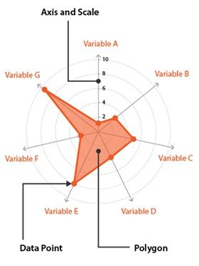 Vendor assessment Audit system