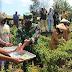 Masyarakat dan Dankolakopsrem 172 Panen di Kebun Satgas Yonif 131