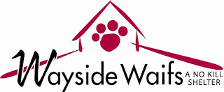 http://www.waysidewaifs.org/site/PageServer