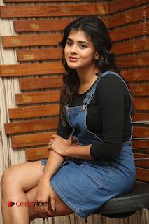Actress Hebah Patel Stills at Nanna Nenu Naa Boyfriends Movie Interview  0052.JPG