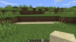 sugarcane farming 1