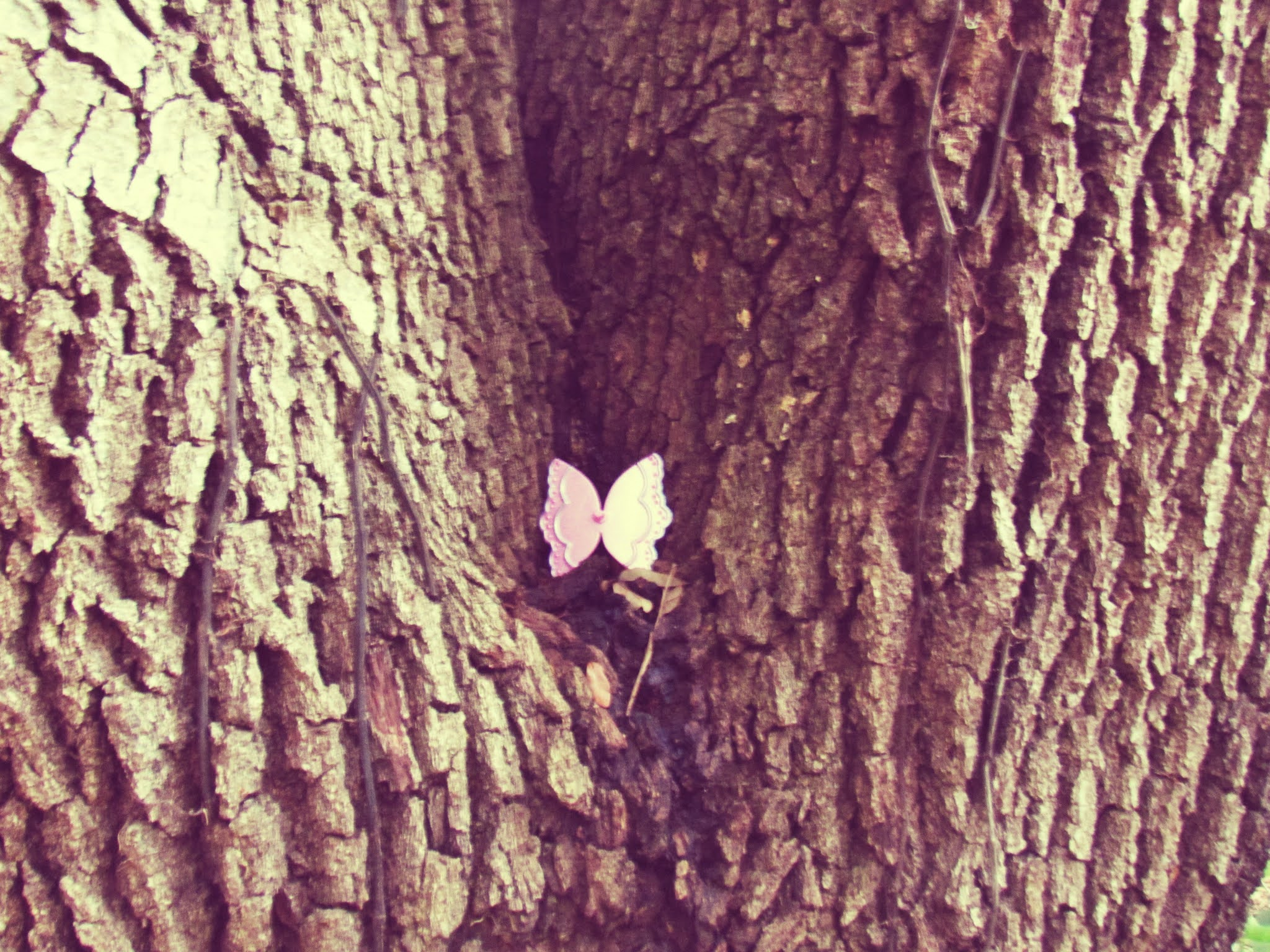 An oak tree with pink fairy wings, girl novelty fairy wings toy, in an oak tree forest
