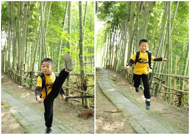 Bamboo Forest at Fushimi Inari