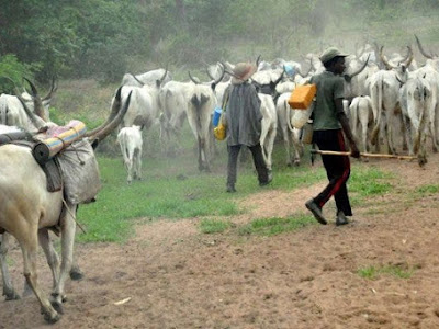 Miyyeti Allah asks FG to give herdsmen palliative