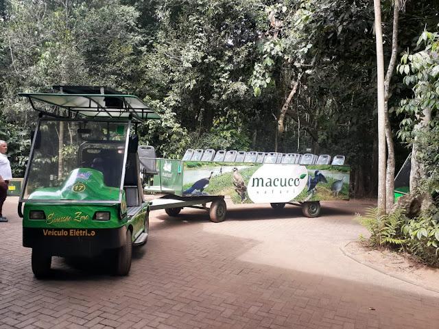 Macuco Safári: beleza e aventura no melhor passeio de Foz do Iguaçu