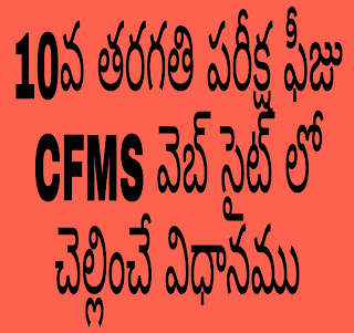 10th Class Examination Fees Payable on the CFMS website