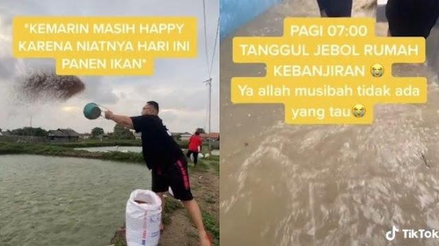 Viral Wanita Ini Gagal Panen 2 Ton Ikan Gurami karena Banjir, Bibit yang Baru Ditabur Juga Hanyut