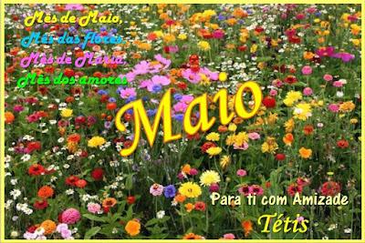 Resultado de imagem para Maio Mês das flores imagem