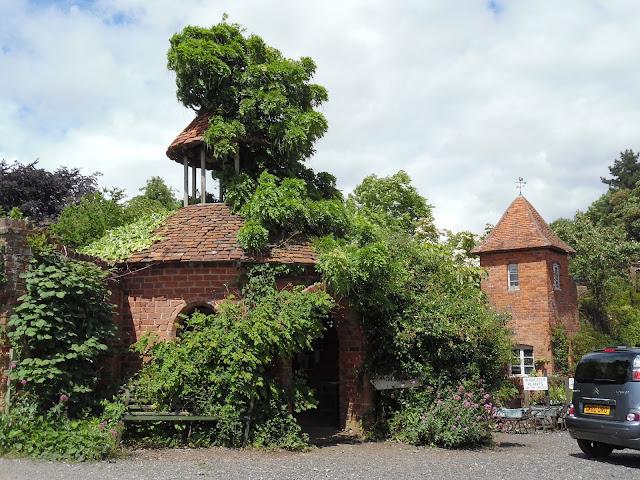 budowle z cegły porośnięte pnączami