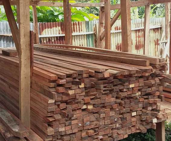 kayu borneo