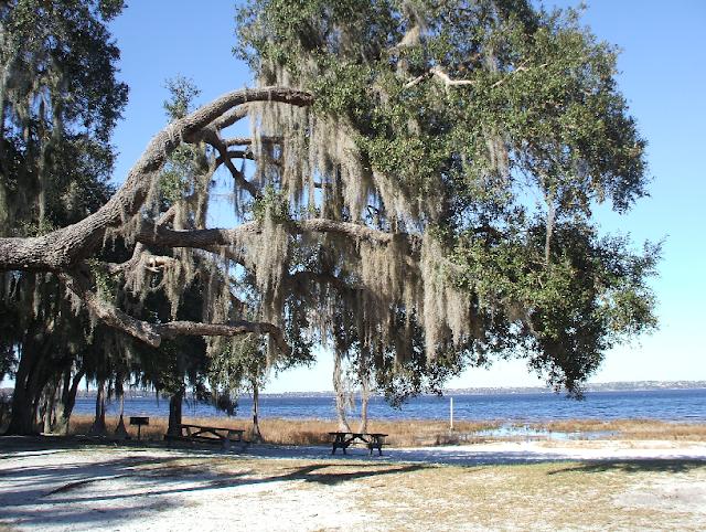 Lake Louisa State Park em Orlando