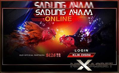 Adu Ayam Bangkok Arena Adu Ayam Online Indonesia - nexiasbet88.info