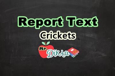 Contoh Report Text Pendek Tentang Jangkrik Dan Terjemahannya Contoh Text Bahasa Inggris Lengkap