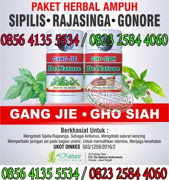 Obat Herbal Untuk Kencing Nanah Murah Di Apotik