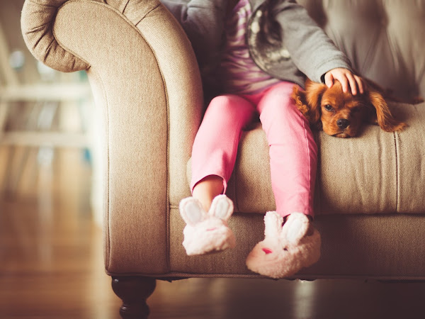 Dealing with Child Behavioral Problems