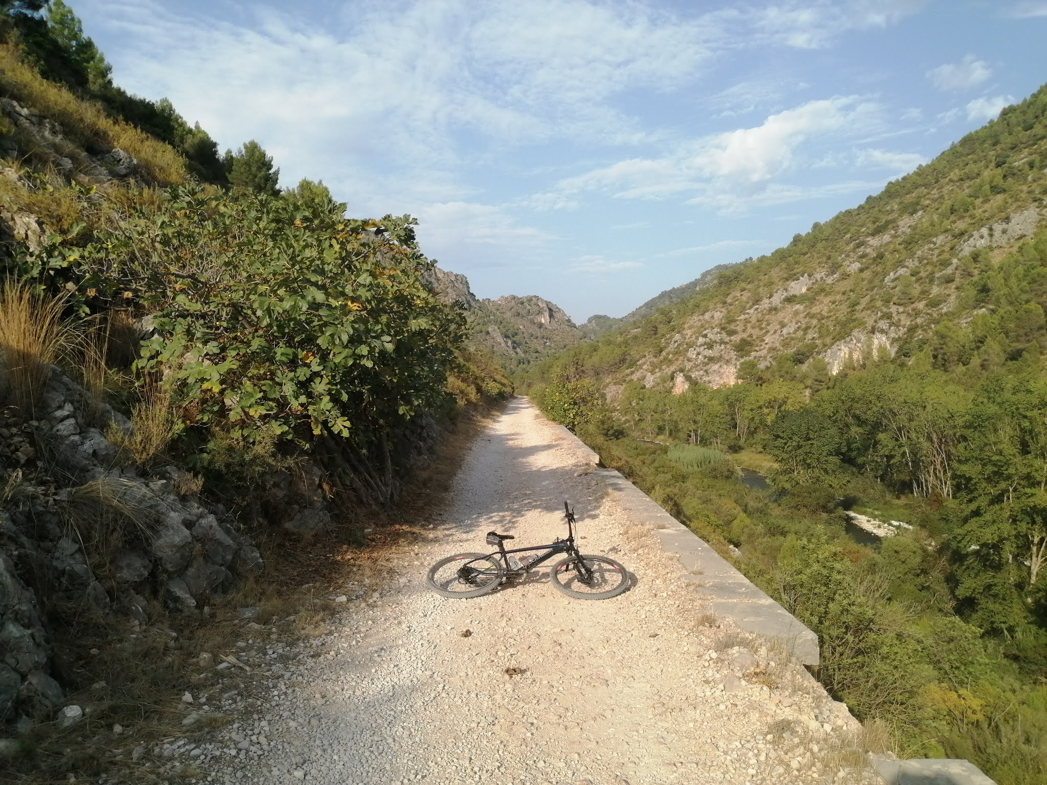 Bicycle on the River Serpis Greenway near Lorcha, Alicante, Spain